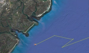 Graph courtesy of OCEARCHMary Lee breached the ocean's surface southeast of Savannah on Dec. 14