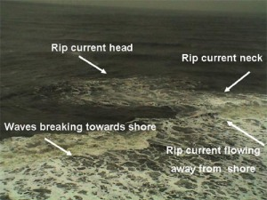 "Rip currents are identifiable from the highest point on beach. Note the different colored water of the rip ""head"" beyond the surf zone, the choppy water in the rip ""neck"" and the break in the incoming wave pattern as waves roll into shore."