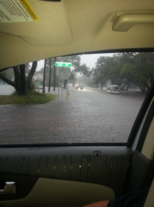 My guests experienced a whopper of a storm in late July when inches of rain fell in hours and intersections along Kings Highway (Business 17) were flooded. Kudos to the MBPD and all emergency personel, who were out mid-storm ensuring our safety. (Photo by DBB correspondent Laurie Spriggle Kratzer)
